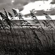Hatteras Island Sunrise 18 9/3 Art Print