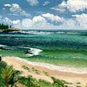 Hawaii Beach Art Print