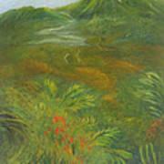 Hawaii II Art Print