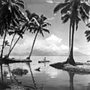 Hawaii Tropical Scene Art Print