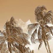 Hawaiian Breeze Art Print