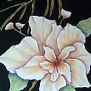 Hawaiian Pua Art Print