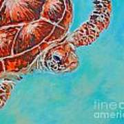 Green Turtle Art Print