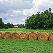 Hay Day Print by Steven  Michael