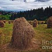 Hay In Stacks In Tatra Mountains Poland Art Print