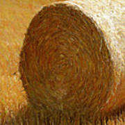 Hay In The Field Art Print