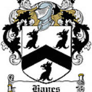 Hayes Coat Of Arms Donegal Ireland Art Print