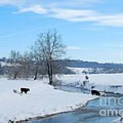 Hays Creek Winter Art Print