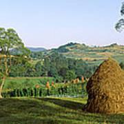 Haystack At The Hillside, Transylvania Art Print