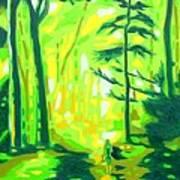 Hazy Sunny Forest Art Print