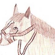 Head Of A Horse Art Print