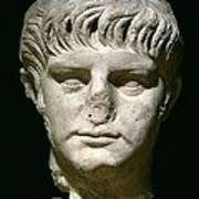 Head Of Nero Art Print by Anonymous