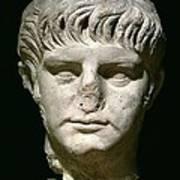 Head Of Nero Art Print