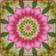Healing Mandala 25 Art Print by Bell And Todd