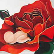 Healing Painting Baby Sleeping In A Rose Art Print
