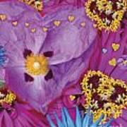 Heart Juxtaposition Art Print by Alixandra Mullins