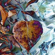 Heart On My Leaves Art Print