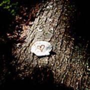 Heart Shape Stop Art Print