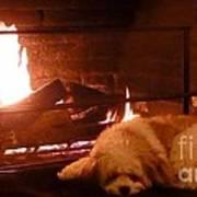 Hearth Warming Dog Art Print