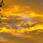Heaven's Sky Art Print by Andrea Dale