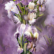 Heirloom Iris In Iris Vase Art Print