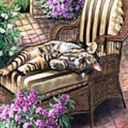 Hello From A Kitty Art Print by Regina Femrite