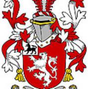 Henn Coat Of Arms Irish Art Print