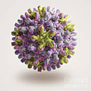Hepatitis B Virus Art Print