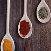 Herbs And Spices Art Print