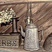 Herbs Bw Art Print