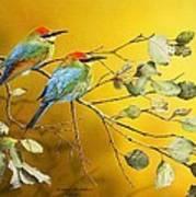 Here Comes The Sun - Rainbow Bee-eaters Art Print