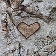 Here Is My Heart Art Print
