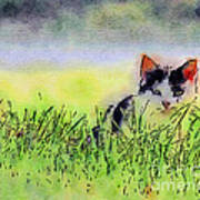 Here Kitty Kitty Kitty Art Print