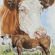 Hereford Cattle Art Print