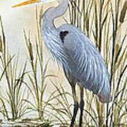 Heron And Cattails Art Print by James Williamson
