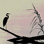 Heron Morning Art Print