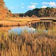 Herring River Cape Cod Marsh Grass Autumn Art Print