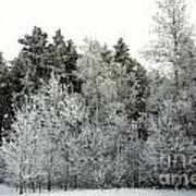 Hersey Lake Under Snow Art Print