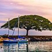 Hickam Harbor View Art Print by Lisa Cortez