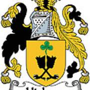 Hickson Coat Of Arms II Kerry Ireland Art Print
