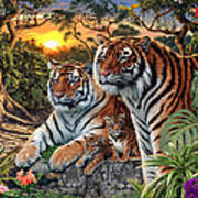 Hidden Images - Tigers Art Print by Steve Read