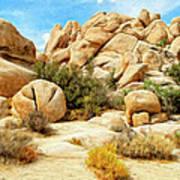 Hidden Valley Trail Art Print