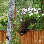 Hiding Moose Art Print by Jennifer Kimberly