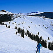 High Angle View Of Skiers Skiing, Vail Art Print