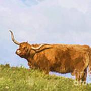 Highland Cow Watercolour Art Print
