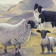 Highland Spirit Art Print by John Silver