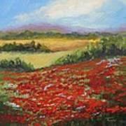 Highway Poppies  Art Print