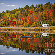 Highway Through Fall Forest Art Print