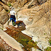 Hiker On Window Trail In Chisos Basin In Big Bend National Park-texas   Art Print