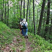 Hiking Group Art Print